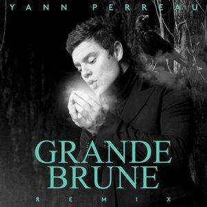 Yann Perreau 歌手頭像