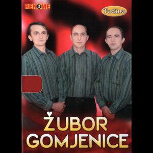Zubor Gomjenice 歌手頭像