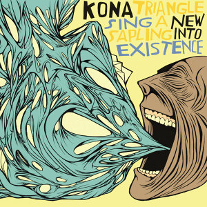 Kona Triangle