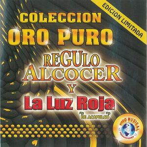 Regulo Alcocer y La Luz Roja 歌手頭像