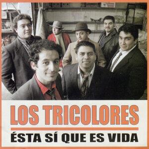 Los Tricolores 歌手頭像
