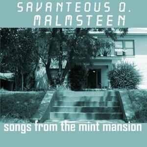 Savanteous Q. Malmsteen