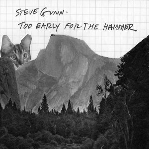Steve Gunn 歌手頭像