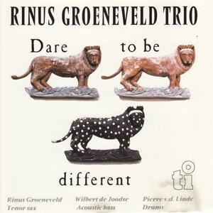 Rinus Groeneveld 歌手頭像