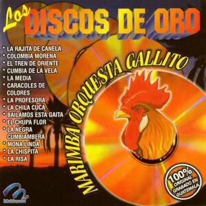 Marimba Orquesta Gallito 歌手頭像