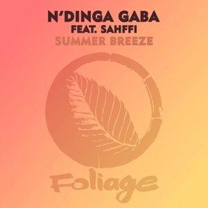 N'Dinga Gaba