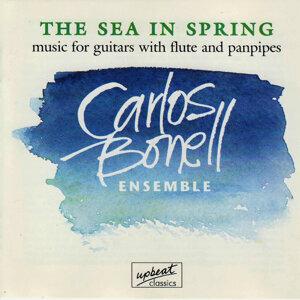 Carlos Bonell Ensemble 歌手頭像