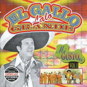 Lalo El Gallo Grande 歌手頭像