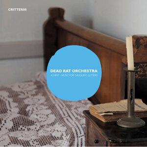 Dead Rat Orchestra 歌手頭像