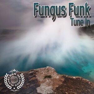 Fungus Funk 歌手頭像