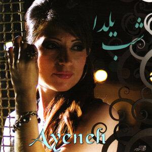 Ayeneh 歌手頭像