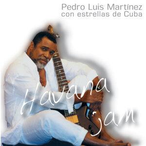 Pedro Luis Martinez 歌手頭像