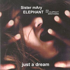 Sister Mary Elephant 歌手頭像