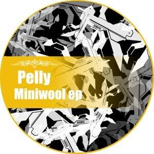 Pelly 歌手頭像