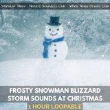 Stardust Vibes, Nature Soundzzz Club, White Noize Dream Club