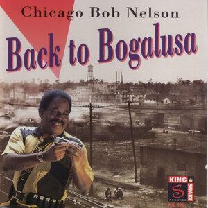 Chicago Bob Nelson 歌手頭像
