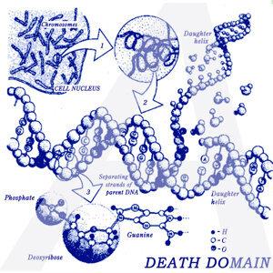 Death Domain 歌手頭像