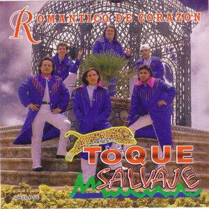 Toque Salvaje 歌手頭像