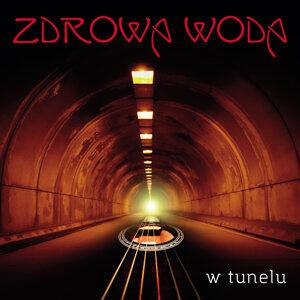 Zdrowa Woda 歌手頭像