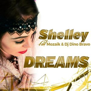 Shelley 歌手頭像