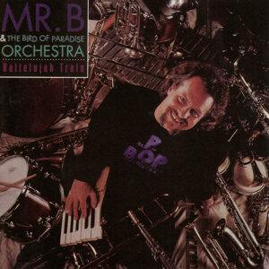 Mr. B & The Bird Paradise Orchestra 歌手頭像