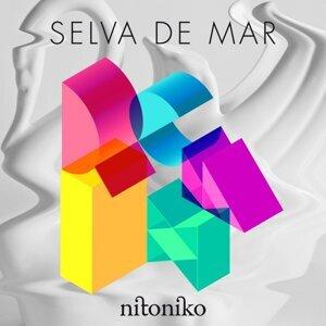Nitoniko 歌手頭像