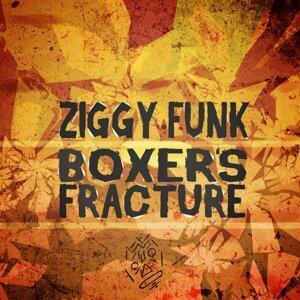 Ziggy Funk 歌手頭像