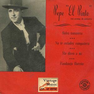 Pepe El Pinto 歌手頭像
