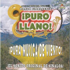Banda Sinaloense Puro LLano 歌手頭像