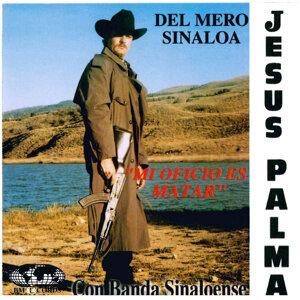 Jesus Palma 歌手頭像