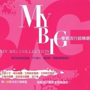 My Big Collection (優質流行超精選) 歌手頭像