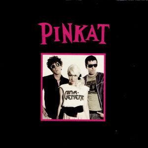 Pinkat 歌手頭像