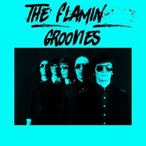 The Flamin' Groovies 歌手頭像