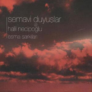Halil Necipoğlu 歌手頭像