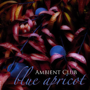 Ambient Club 歌手頭像