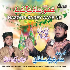 Hafiz Muhammad Amir Shehzad Sultani & Zeeshan Haider Sultani 歌手頭像