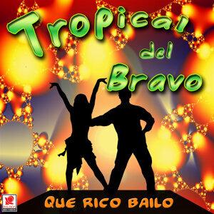 Tropical Del Bravo 歌手頭像