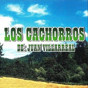 Los Cachorros de Juan Villarreal 歌手頭像