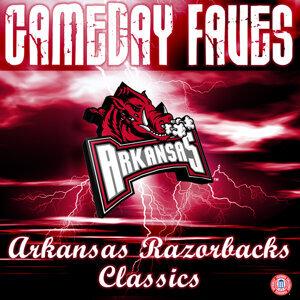 The University of Arkansas Razorbacks Marching Band 歌手頭像