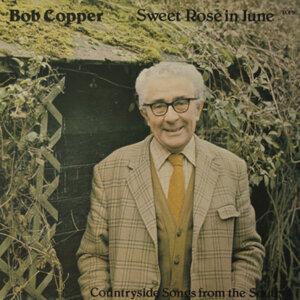 Bob Copper 歌手頭像