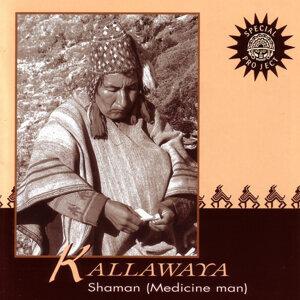 Kallawaya 歌手頭像