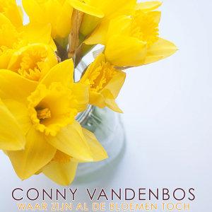 Conny Vandenbos 歌手頭像