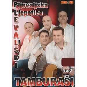 Pljevaljski Tamburasi 歌手頭像