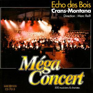 Echo des Bois 歌手頭像