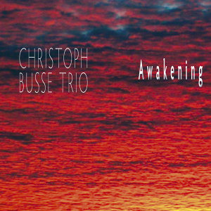 Christoph Busse Trio