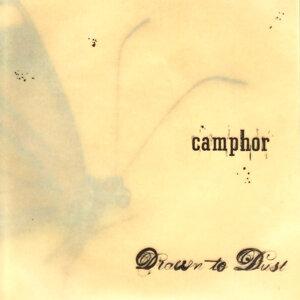 Camphor 歌手頭像