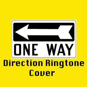 Cover One Direction 歌手頭像