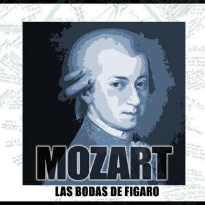 Orquesta Sinfónica Y Coro De La RAI De Roma 歌手頭像