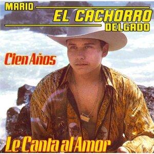 Mario El Cachorro Delgado 歌手頭像