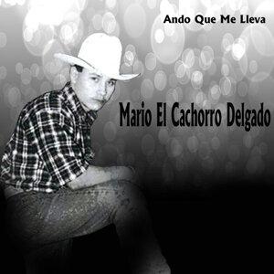 Mario El Cachorro Delgado